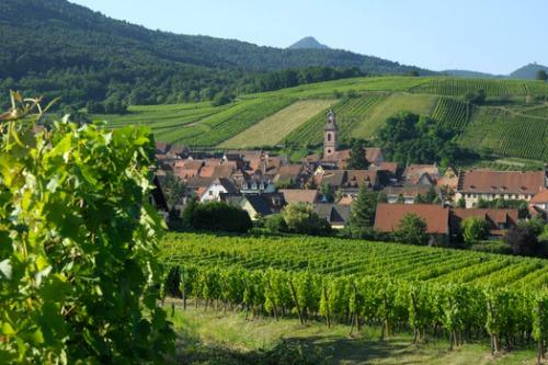Sommets d'Alsace - Lieu Riquewihr - Alsace Hôtel Le Schœnenbourg ***